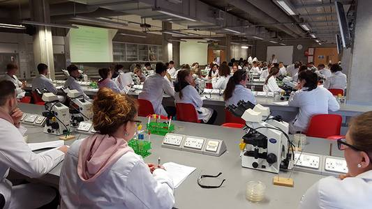 Studierende in weißen Kitteln im Labor
