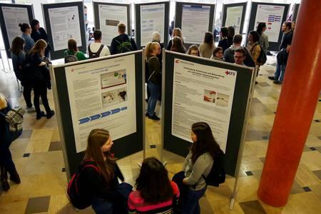 Ein Raum voller Stellwände mit wissenschaftlichen Postern.