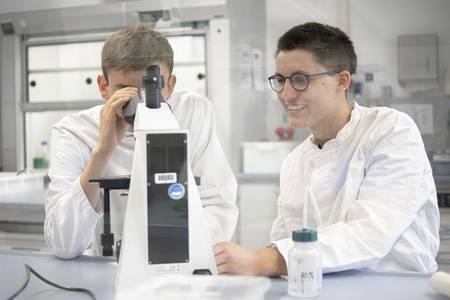 Schüler schauen in ein Mikroskop.