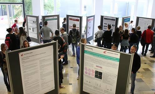 Studierende schauen sich die Poster an