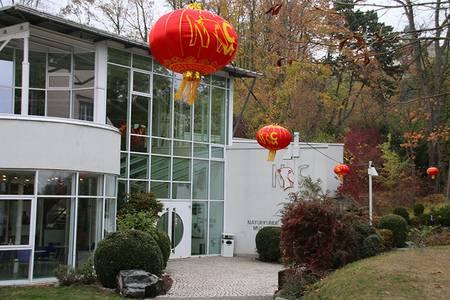 Außenansicht der Naturkunde-Museums Coburg mit chinesischen Laternen