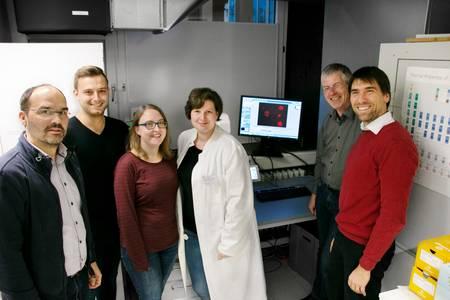 Prof. Andreas Römpp, Bastian Jahreis, Laura Hoen, Viktoria Schyma, Prof. Daniel und Prof. Kalkhof (von links)
